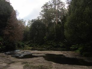 Free camping spot - Great Ocean Road