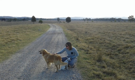 Housesitting on a farm in Albury