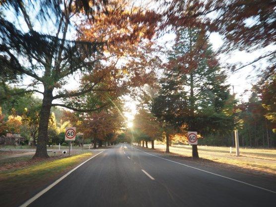 Roadtrip Victoria High Country