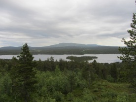 View over Pallas-Yllästunturi National Park