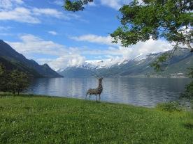 Hardangerfjord